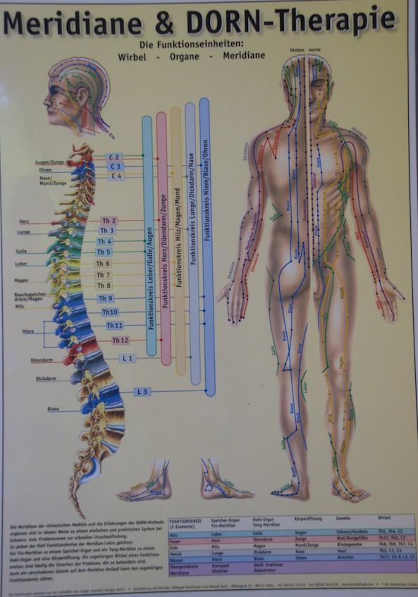 Dorntherapie